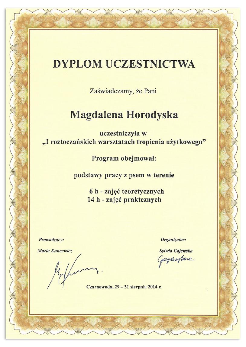 dyplom2_magda