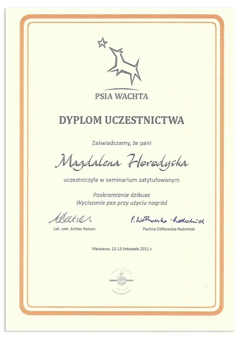 dyplom1_magda